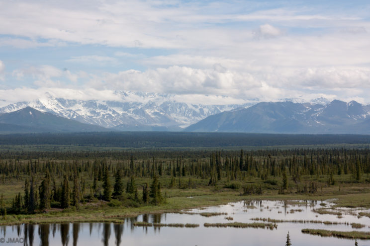 Am Denali Highway